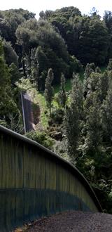 Pest-proof fence, Maungatautari Mountain, New Zealand