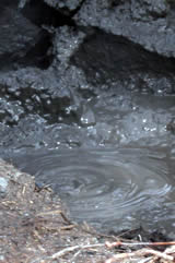 Bubbling Mud at Tokaanu Hot Springs New Zealand