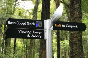 Rate Loop Track Maungatautari Mountain New Zealand
