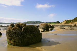 Moeraki Boulders Beach New Zealand
