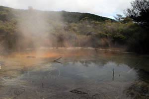 Steaming Hot Thermal Springs