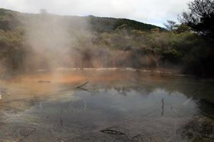 Steaming Hot Thermal Springs