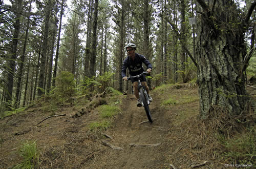 Mountain Biking Woodhill Forest, Auckland - Photographer, Chris Cameron