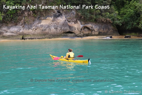 Kayaking along Abel Tasman National Park Coast, Tasman Bay, New Zealand