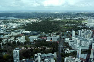 Auckland Volcano Hills and Historic Museum Building New Zealand