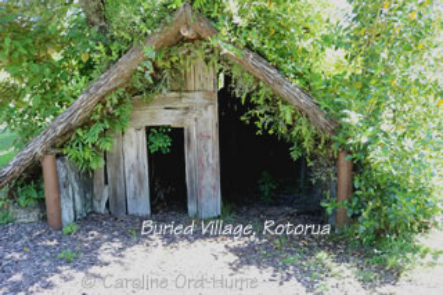 Bay of Plenty Buried Village Rotorua
