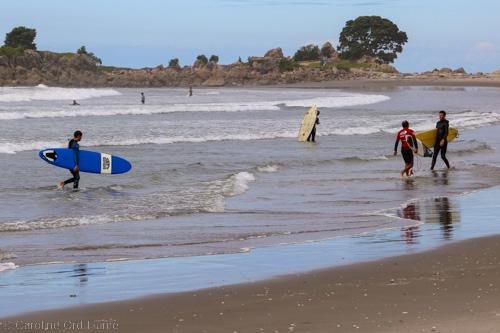 Bay of Plenty Surfing