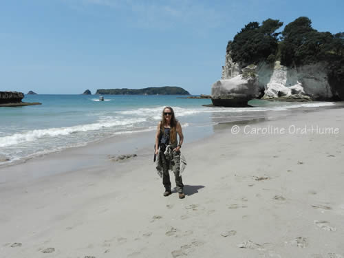 Cathedral Cove beach and cave on the Coromandel Peninsula, New Zealand