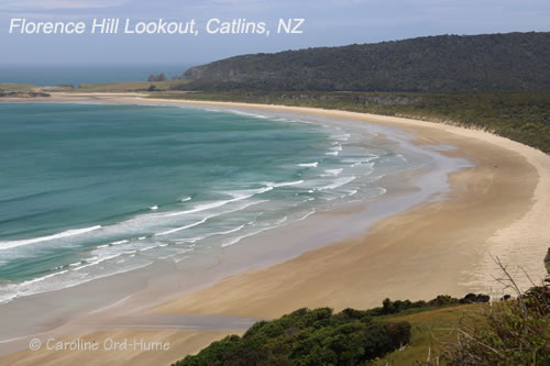 View From Florence Hill Lookout in the Catlins on the New Zealand South Island South Coast