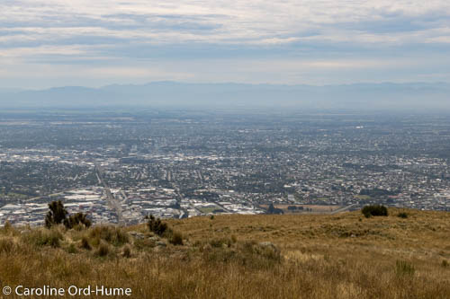 Hazy View of Christchurch City with Southern Alps in Background, from Mount Pleasant Scenic Reserve, Christchurch, South Island, New Zealand
