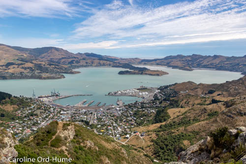 View of Lyttelton Harbour from Mount Pleasant Scenic Reserve, Christchurch, South Island, New Zealand