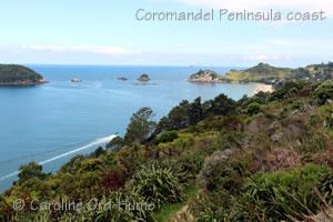 Coromandel Peninsula East coast view