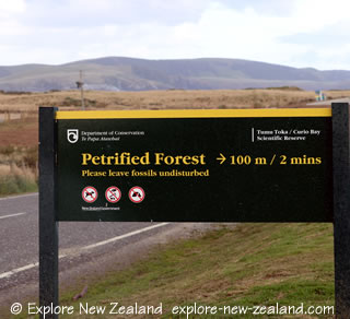 Petrified Forest Sign, Curio Bay, Catlins, New Zealand