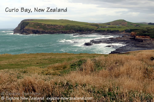 View of Curio Bay from the Headland, Catlins, Southland, New Zealand