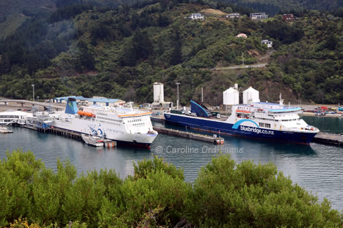 Bluebridge and Interislander Ferries Docked in Picton Port, South Island, New Zealand