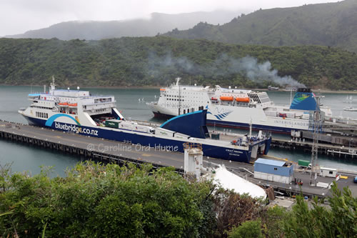 Interislander and Bluebridge Ferries at Picton Dock
