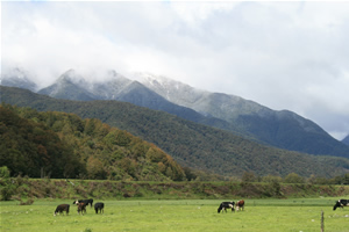 Hamner Springs Lewis Pass New Zealand