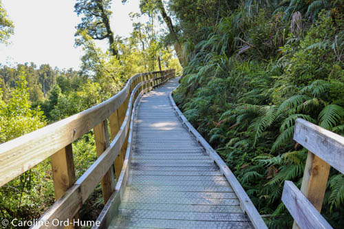 Board Walking Track on Side of Hokitika Gorge, West Coast, New Zealand