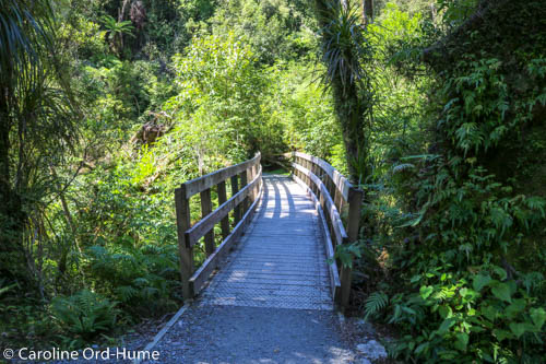 Hokitika Gorge Walk Bridge on Boardwalk, New Zealand