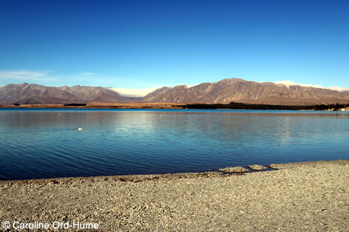 View over Lake Tekapo in Mackenzie Country, Canterbury, South Island, New Zealand