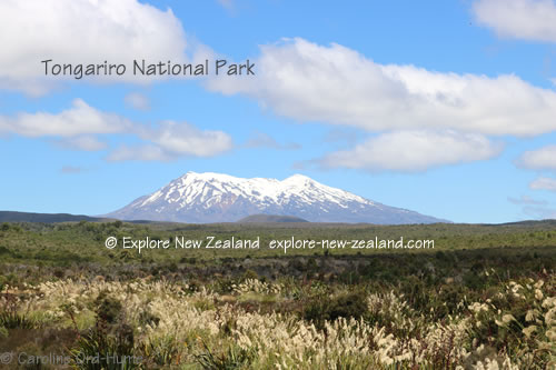Manawatu-Whanganui, Tongariro National Park