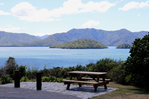 Karaka Point Reserve Lookout