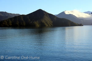 Marlborough Sounds Ferry Cruise Journey
