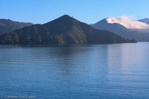 Marlborough Sounds Ferry Cruise Journey