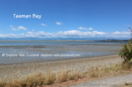 Tasman Bay, View Across Bay to Nelson, New Zealand