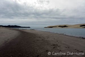 Northland Hokianga Harbour Beach at Opononi