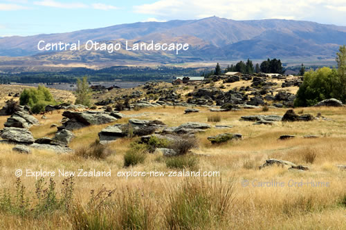 Central Otago Landscape View, New Zealand