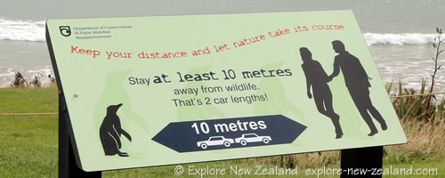 Department of Conservation Wildlife Protection Sign. Keep your distance and let nature take its course. Stay at least 10 metres away from wildlife. That's 2 car lengths! Catlins, Southland, New Zealand