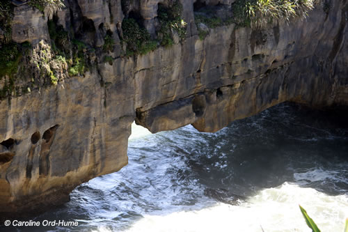 Tidal surge hole at Punakaiki Pancake Rocks, Dolomite Point on the Paparoa National Park coast, New Zealand