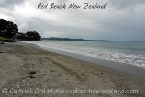 Red Beach Auckland Hibiscus Coast New Zealand