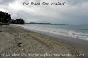 Red Beach Auckland Hibiscus Coast New Zealand