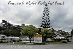 Pinewoods Motor Park, Red Beach, Auckland, NZ