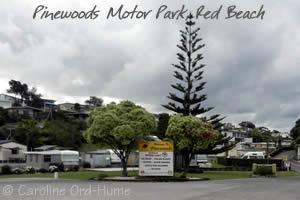 Pinewoods Motor Park, Red Beach, Auckland, NZ