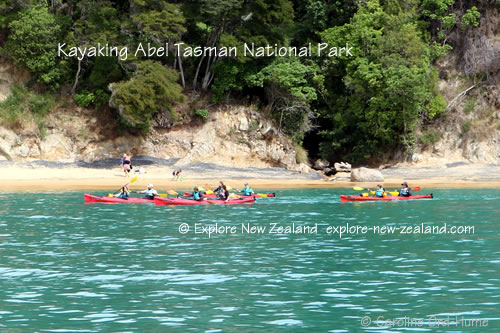 Kayaking, Abel Tasman National Park Coast, New Zealand