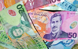 New Zealand Currency $50 NZD and $20 NZD