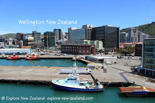 Wellington New Zealand City Harbour