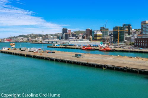 Wellington New Zealand Ferry Terminal and View of City Buildings