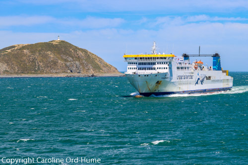 Cook Strait Ferry from Picton to Wellington entering Wellington Harbour, New Zealand