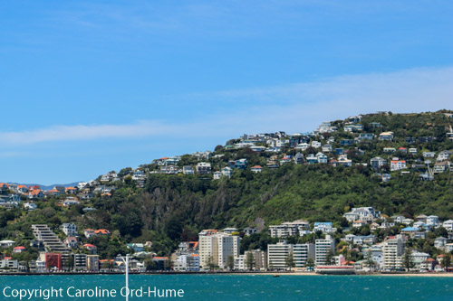 Wellington waterfront, city buildings, and suburbs in the hills, Capital City, North Island, New Zealand