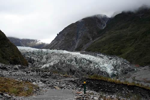 Westland Tai Poutini National Park Glaciers - Fox Glacier