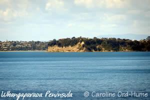 Whangaparaoa Peninsula, Auckland, New Zealand