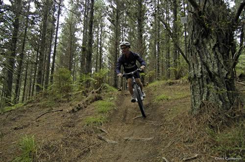 Mountain Biking Woodhill Forest, Auckland - Photographer, Chris Cameron