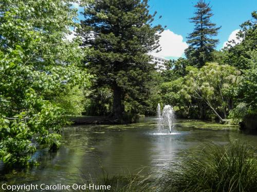 Auckland Park Garden Fountain and Pond, The Domain