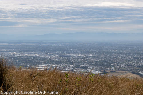 View of Christchurch New Zealand from the Port Hills, Mount Pleasant, Christchurch, South Island, NZ