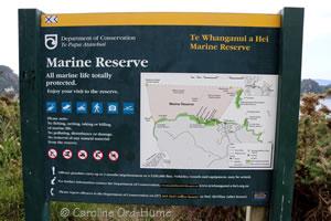 Coromandel Peninsula Marine Reserve Sign