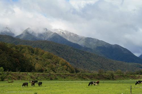 Hamner Springs, Lewis Pass, New Zealand